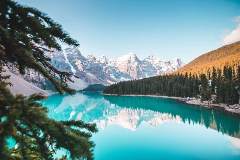 7 Beautiful Bible Verses About Nature