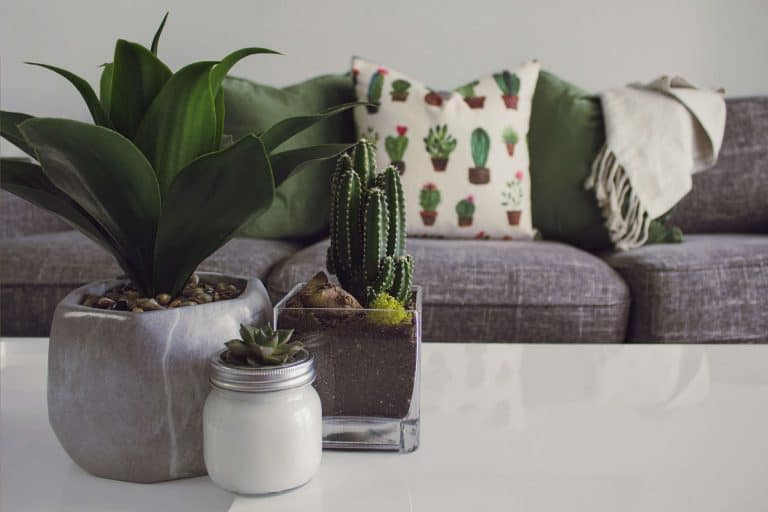 The Best Bible Verses For Home Decor